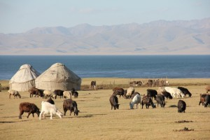 Viaggio negli altopiani del Kyrghyzstan