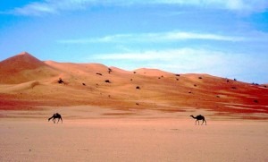 a passo di cammello nel Rub Al Khali