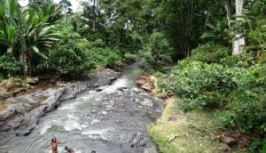 Sao Tome torrenti
