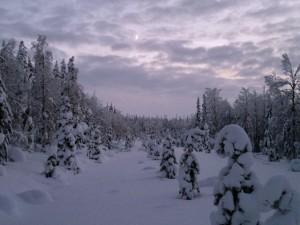 natura Finlandia