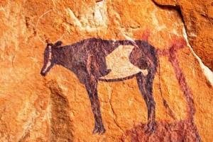 pittura bovide, Viaggi Levi