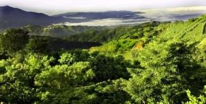 Costa Rica, foresta pluviale