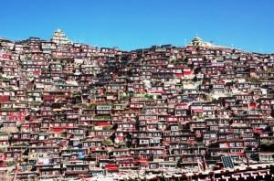 CINA Sichuan_Kham, Accademia  Buddhista di Larung Gar