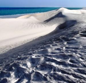 Oman deserto, Viaggi Levi