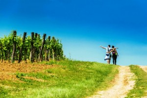 Istria Wine & Walk