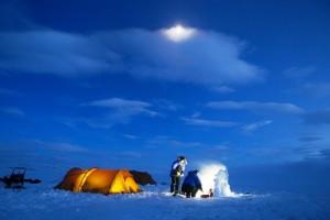 avventura artica